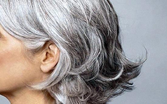 Aloe Vera for Grey Hair3