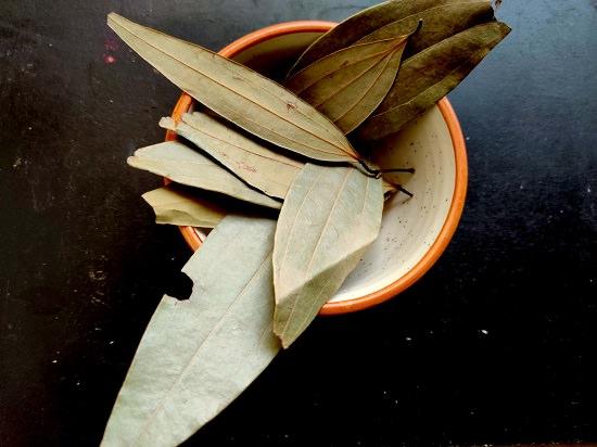 Do Bay Leaves Repel Mice3