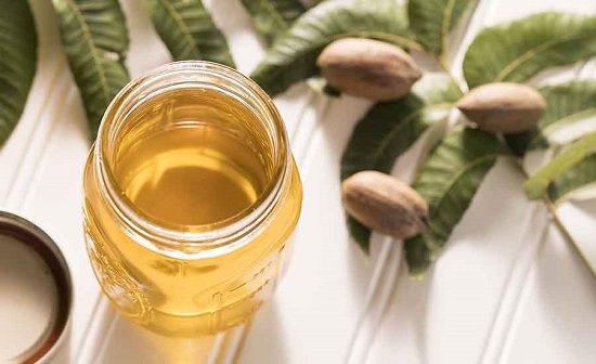 Pecan Oil Benefits1