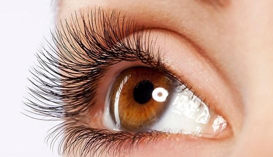 Canola Oil on Eyelashes1