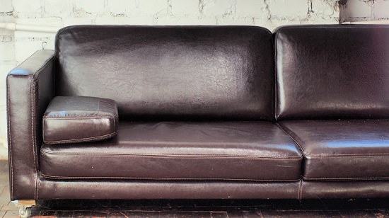 Can Lice Live on Leather Couches3