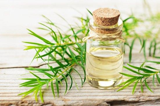 Essential Oils for Ingrown Toenails2